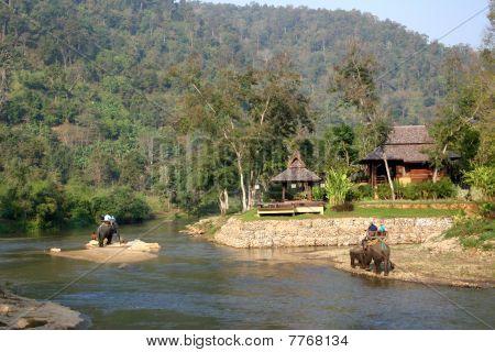 Elefanten-Safari in Thailand