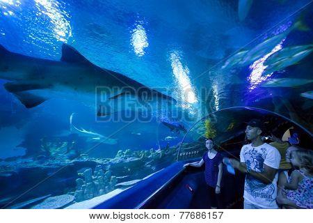 KUALA LUMPUR, MALAYSIA, JULY 5: A group of tourists visiting the aquarium in Kuala Lumpur, Malaysia on July 5, 2014.