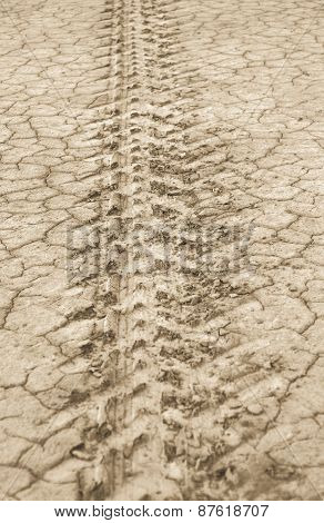 Parched and tire marked ground