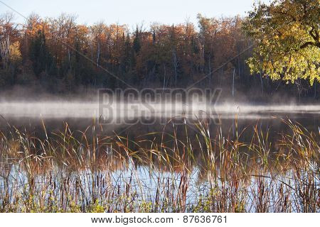 morning mist on the lake