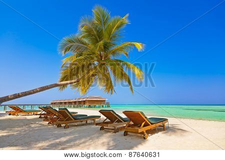 Loungers on Maldives beach - nature vacation background