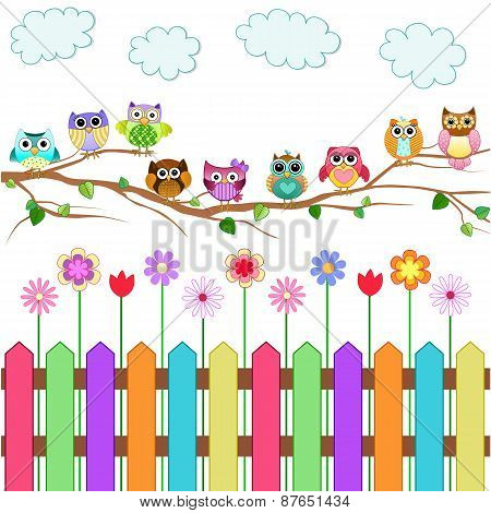 Cute Owls on a Branch Vector