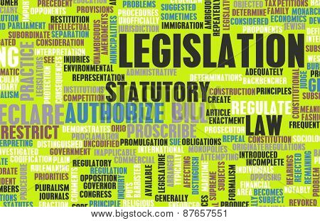 Legislation or Statutory Law as a Concept