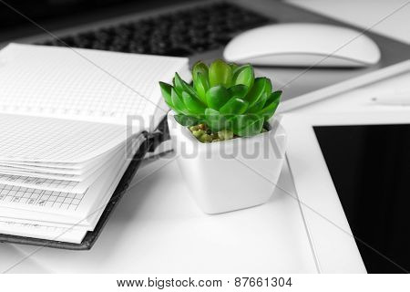 Office workplace with tablet and pot plant close up poster