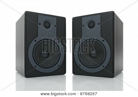 Pair Of Loud Speakers With Reflection
