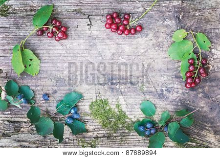 Rustic Wooden Board With Forest Berries Branchlets
