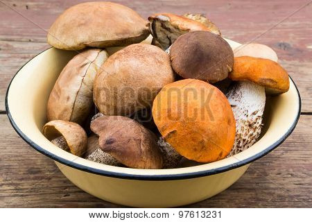 Fresh Wild Mushrooms In An Enamel Bowl