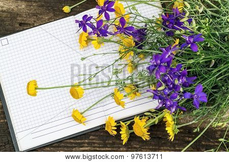 A Bouquet Of Yellow Daisies And Larkspur On Notepads
