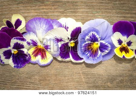 Heartsease Flowers On The Wooden Table