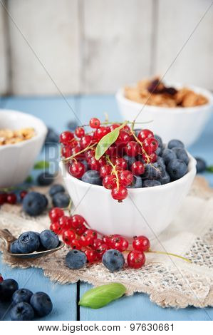 Fresh And Healthy Blueberries And Red Currant