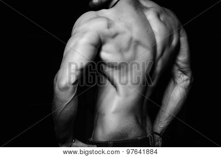 Muscular back and sexy torso of young man. Perfect body, muscles, triceps