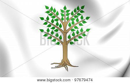 Giudicato Of Arborea 3D Flag