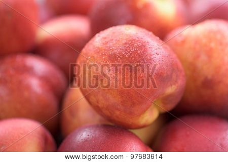 Fresh Red Apricots