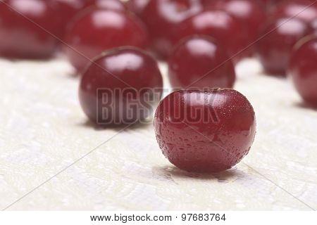 Sour Cherry Group Selective Focus
