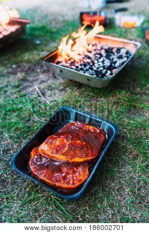 Pickled mutton steak on non-permanent foil grill closeup