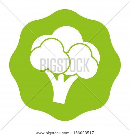 sticker delicious broccoli healthy fruit, vector illustration