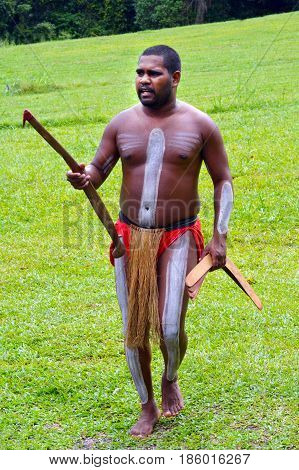 QUEENSLAND AUS - APR 17 2016: Yirrganydji Aboriginal warrior man carries boomerangs in Queensland Australia.