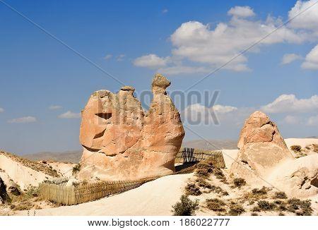 Camel Rock In Devrent Valley At Cappadocia. Turkey