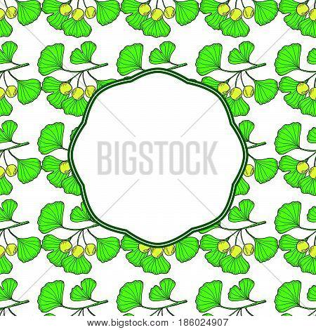 Ginkgo Biloba plant leaf branch berry. Square banner medicinal plant. Hand drawn sketch illustration in color.