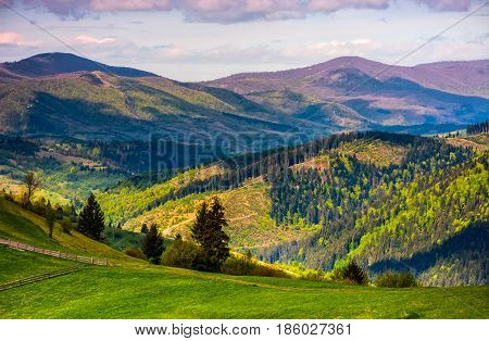 Rural Fields With Fence On Hills Of Carpathians