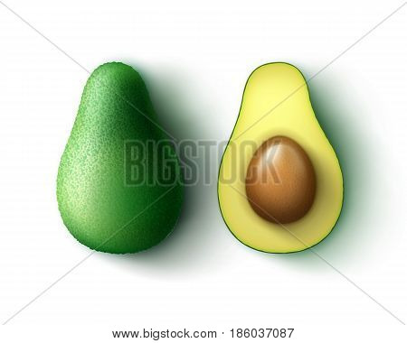 Vector green fresh whole and half cut avocado top view isolated on white background