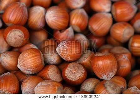 Whole Big Filbert Hazelnuts Close Up Background