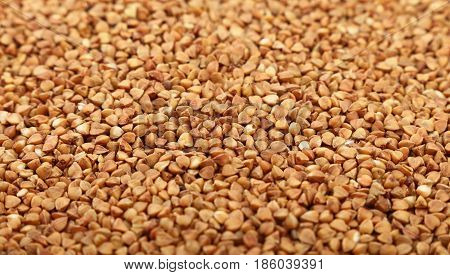 Dried Brown Buckwheat Groats Close Up Background