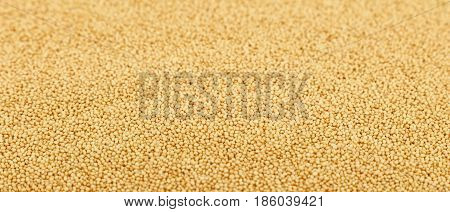 Amaranth Grain Seeds Close Up Background