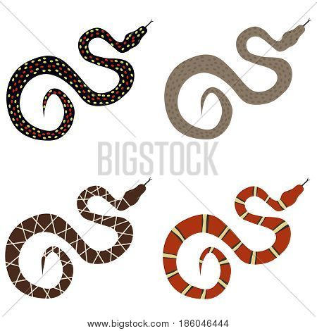 Snake a set of poisonous snakes. Flat design vector illustration vector.