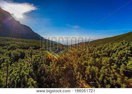 High Tatra mountains in Slovakia morning wide angle landscape.