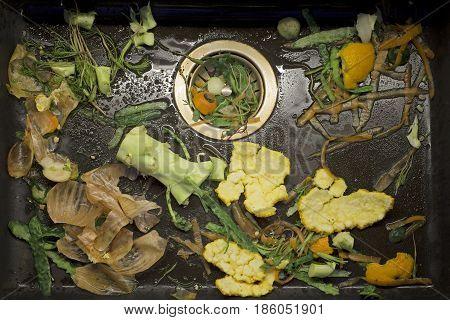 fresh vegetable scarp in the black sink