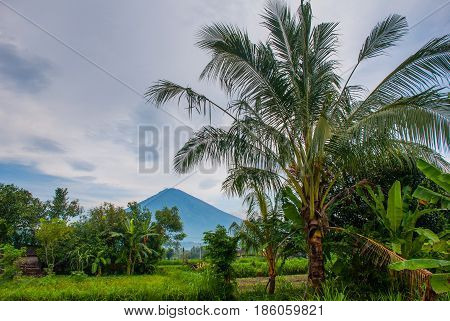 Scenic View Of A Amed Bay In Bali With The Volcano Mount Agung In The Background.