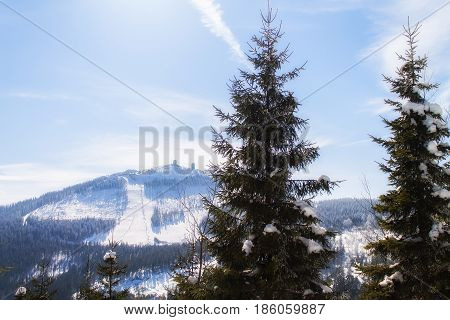 Winter landscape view to the mountain bis arber Bavaria