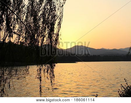 West Lake, China, in the evening, the golden sunset, willow silhouette, like curtains, especially beautiful.