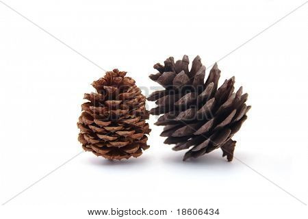 Two different cones isolated on white background