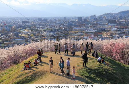 NAGANO JAPAN - APRIL 18, 2017: Unidentified people visit Kobo mountain for cherry blossom viewing in Matsumoto.