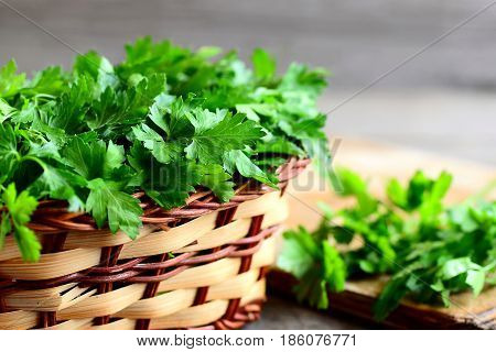 Fresh green parsley sprigs in a wicker basket and wooden board. Garden parsley plant. High source of flavonoid and antioxidants, folic acid, vitamin K, vitamin C and vitamin A. Rustic style. Closeup