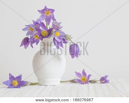 spring flowers in vase on white background