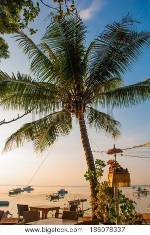Beautiful Beach With A Cafe In Sanur With Local Traditional Boats Palm Trees On The Island Of Bali A