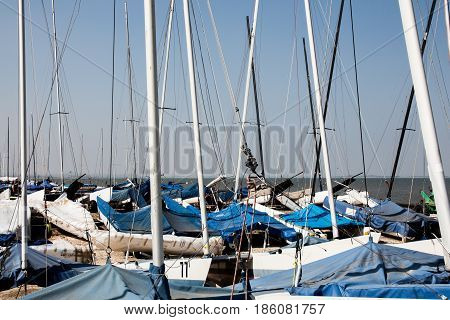 Sailing boat masts parked at the seaside in Whitstable Kent United Kingdom