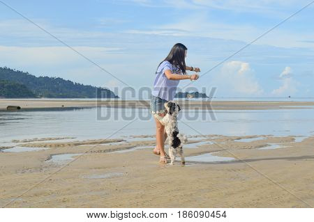 Dog playing with Women walking on the beach travel Koh Chang Trad Thailand