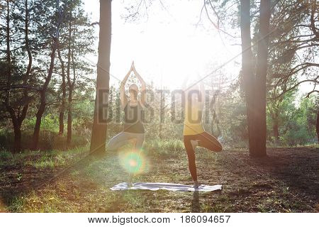 Two girls meditating practicing yoga fitness exercise at sunset in forest. Vrksasana tree pose