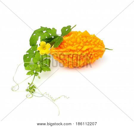 Yellow momordica (bitter melon) with leaves and flower isolated on white background.