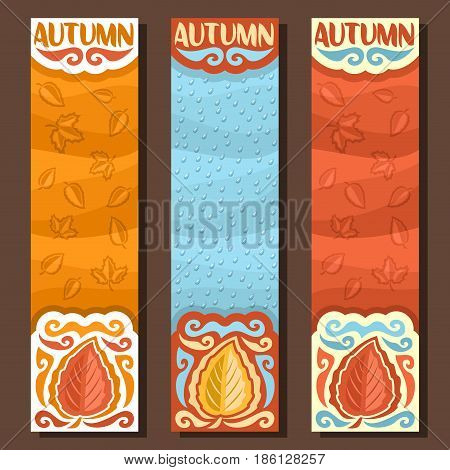 Vector set vertical banners for Autumn season: 3 layouts with falling leaves background, rain fall templates with title text - autumn, flyers with blue rainfall drops backdrop, october rainy weather.