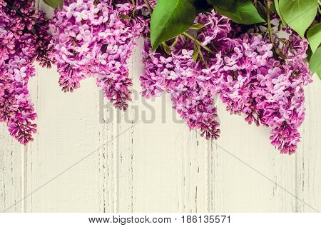 Beautiful spring flowers lilac on white wooden vintage board with place for text. Syringa vulgaris. Happy Mother's Day greetings card. Top view. Copy space.