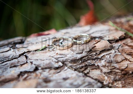 Couple Wedding Rings On Old Wood Texture
