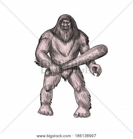 Tattoo style illustration of a Bigfoot or Sasquatch a simian-like creature of American folklore that inhabit forests usually described as a large hairy bipedal humanoid standing holding club viewed from front set on isolated white background.