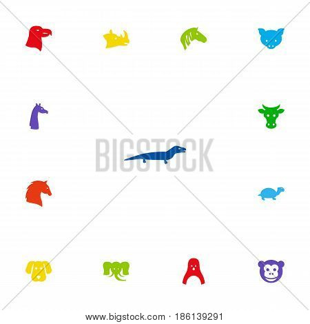 Set Of 13 Beast Icons Set.Collection Of Camelopard, Hog, Rhinoceros And Other Elements.