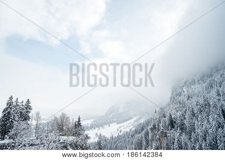Foggy View From Neuschwanstein, Alpine Foothills With Hilly Landscape. Trees, Mountains Full Of Snow