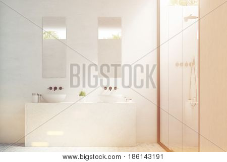 Two bathroom sinks with mirrors hanging above them and a potted plant standing between them. 3d rendering toned image.